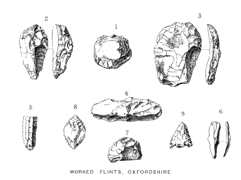 Flints found in Oxfordshire by Pitt-Rivers