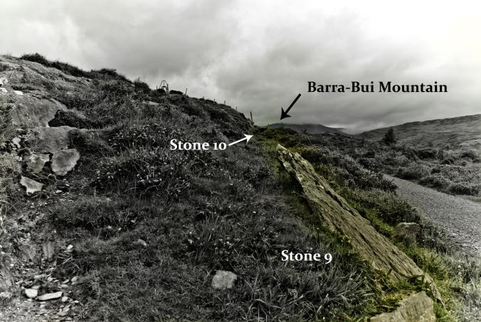 Stone Row at Molly Gallivan's