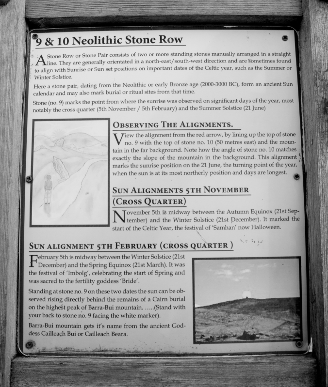 The information panel for the Neolithic Stone Row at Molly Gallivan's.
